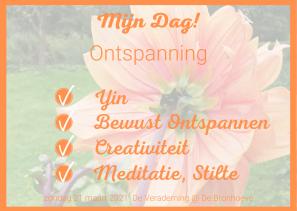 Mijn Dag! INSTA (kaart formaat!) Oranje vinklijstjes