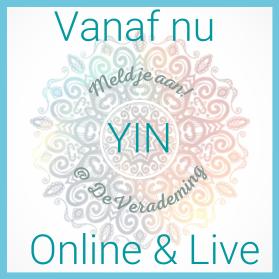 _yin online & live